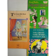Book Bundle- mini stories for years 7-11 years