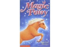 Magic Pony: Night-Time Adventure