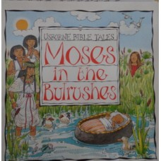 Moses in the Bulrushes: Level 6