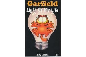 Garfield Light Of My Life