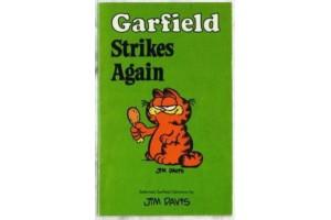 Garfield Strikes Again