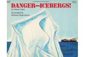 Danger- Icebergs