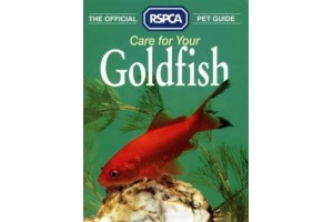 Care For Your Goldfish (The official RSPCA pet guide)