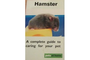 Hamster- A complete guide to caring for your pet