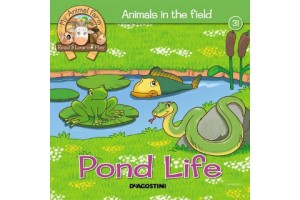 Animals in the Field - Pond Life