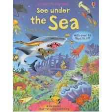 See under the Sea - an Usborne flap book