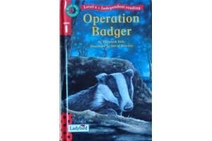 Operation Badger (Level 10-11)