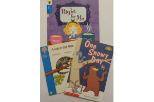 Oxford  Reading Tree (book bundle - 3 books- Level 3)