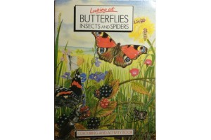 Butterflies and Moths Activity Book