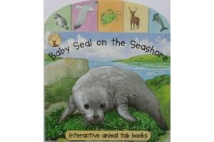 Baby Seal on the Seashore