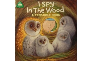 I Spy In The Wood